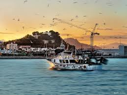 barco pesquero gamba denia bohosuitesdenia